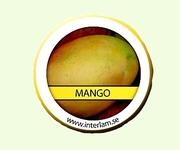 Doftvax Mango